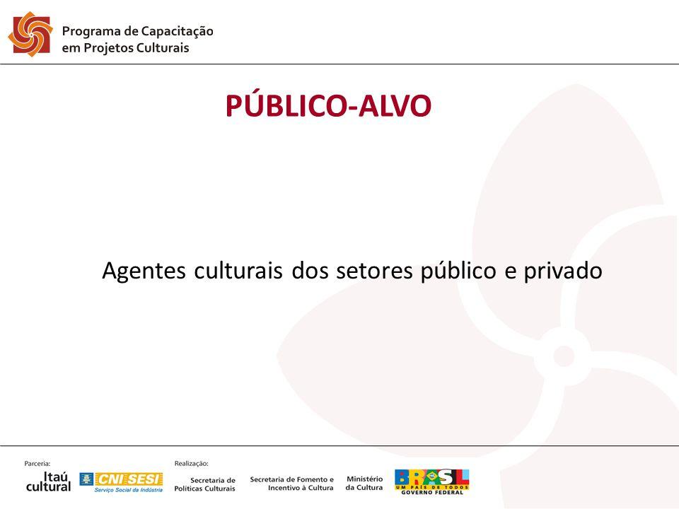 Agentes culturais dos setores público e privado