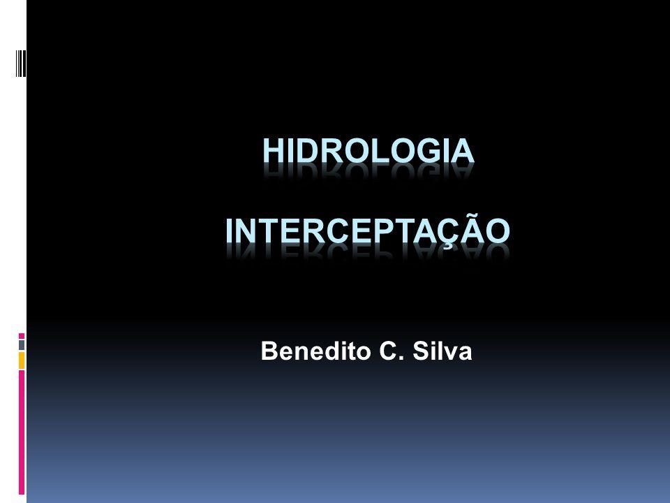 Hidrologia Interceptação
