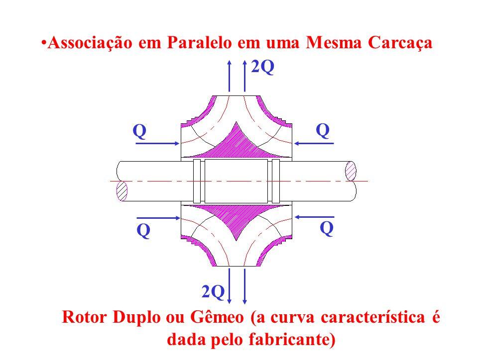 Rotor Duplo ou Gêmeo (a curva característica é dada pelo fabricante)