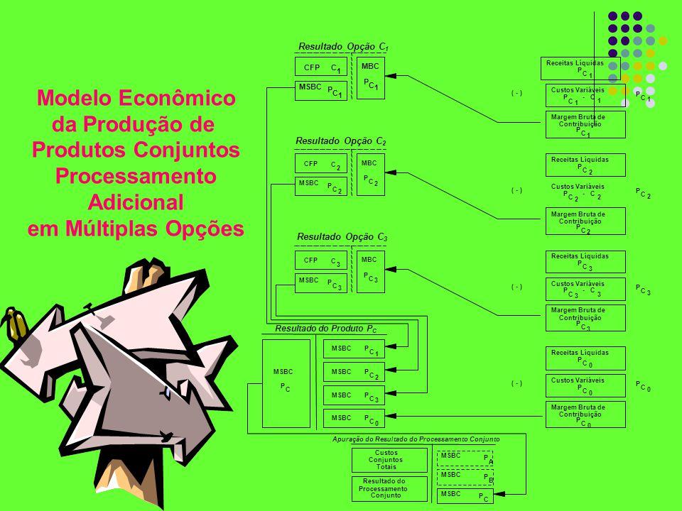Modelo Econômico da Produção de Produtos Conjuntos Processamento