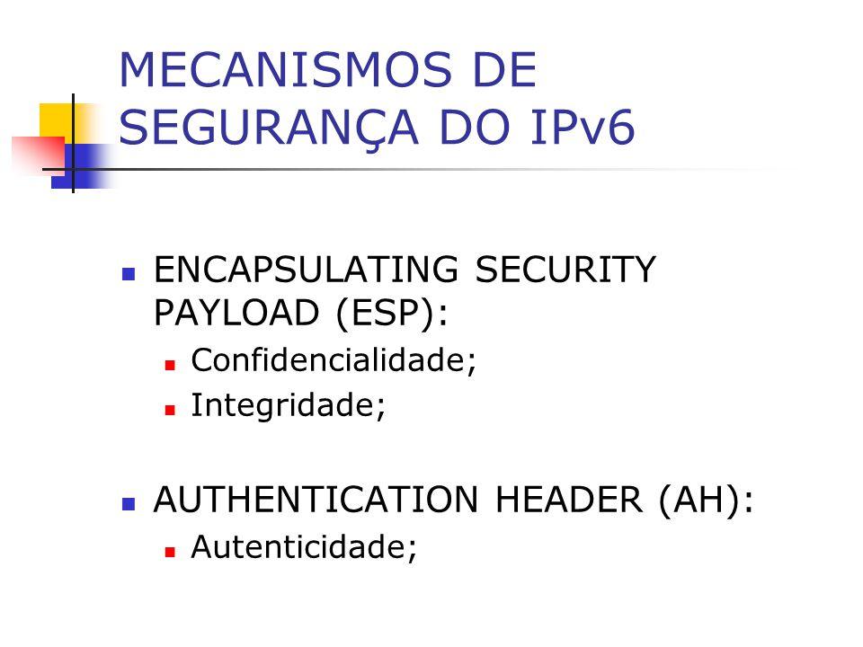 MECANISMOS DE SEGURANÇA DO IPv6