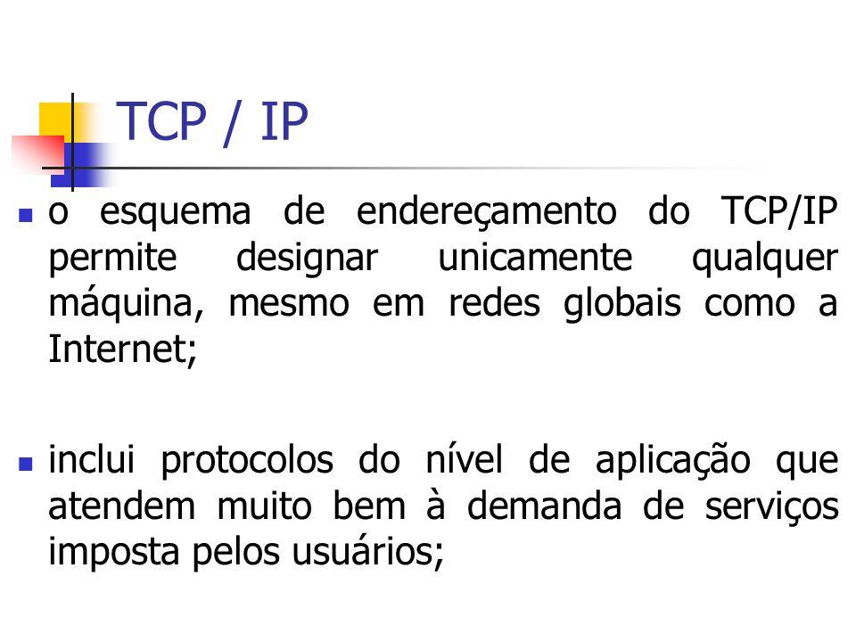 TCP / IP o esquema de endereçamento do TCP/IP permite designar unicamente qualquer máquina, mesmo em redes globais como a Internet;