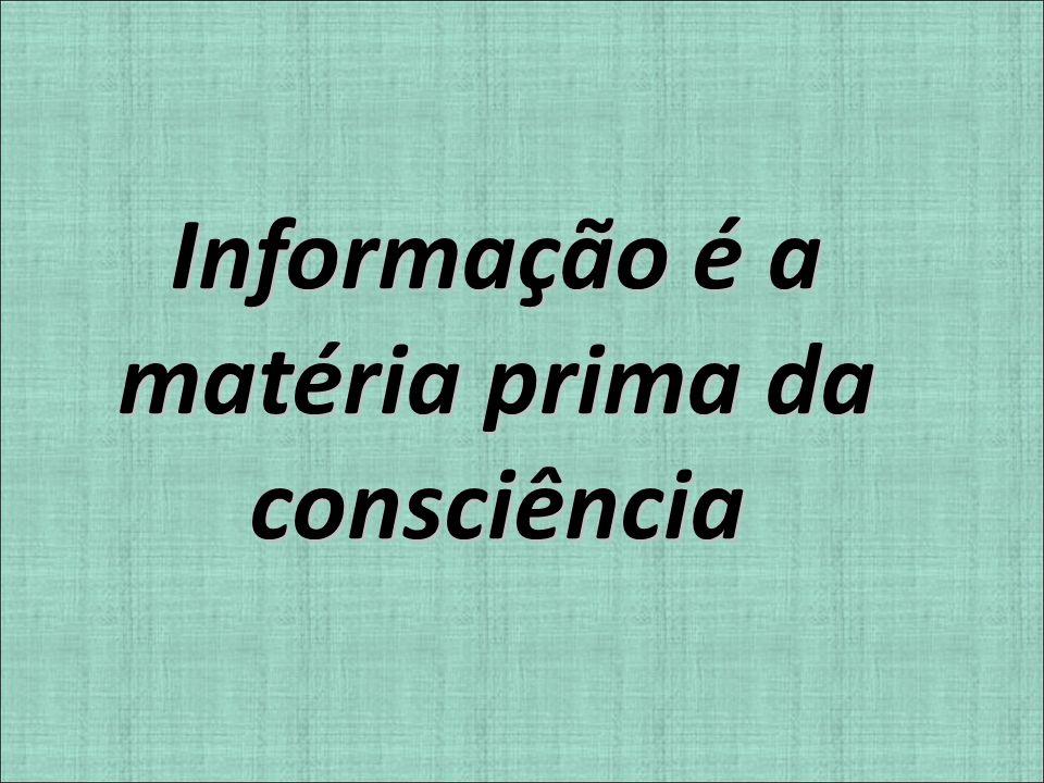 Informação é a matéria prima da consciência