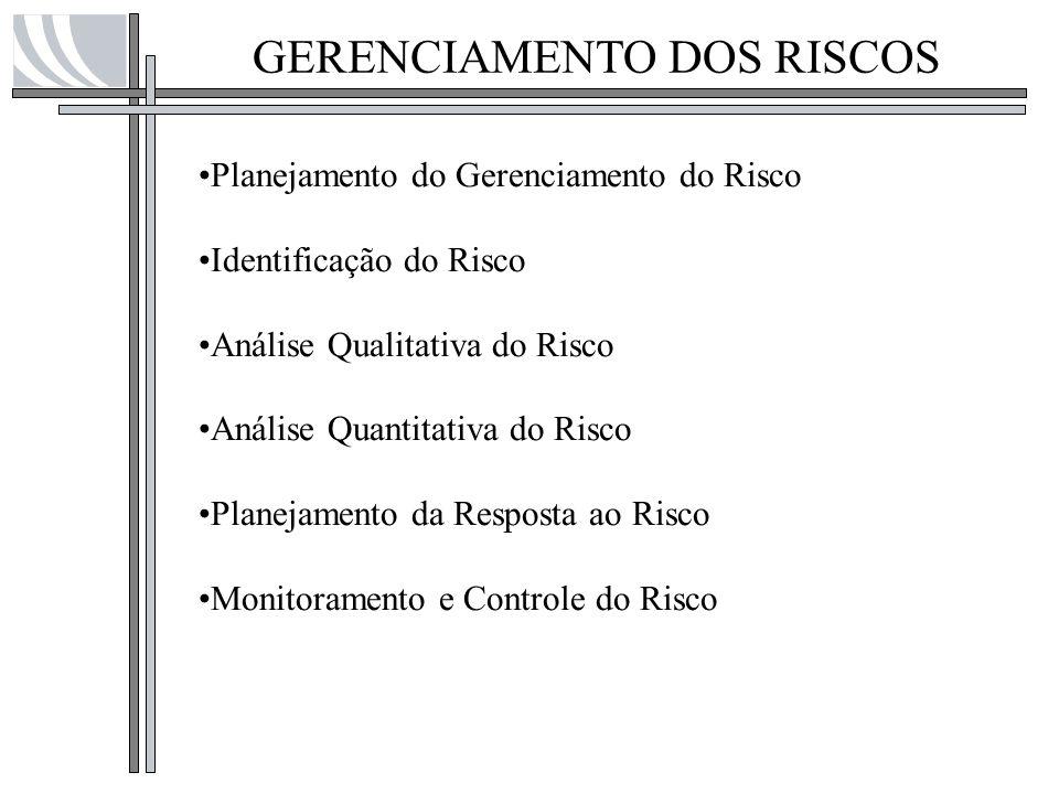 GERENCIAMENTO DOS RISCOS
