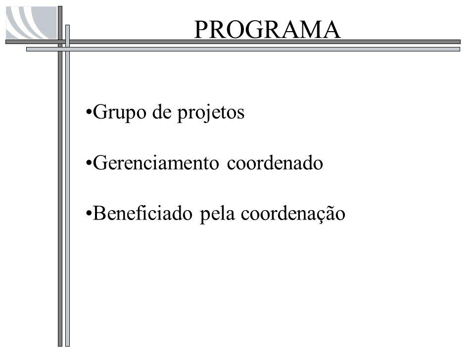 PROGRAMA Grupo de projetos Gerenciamento coordenado