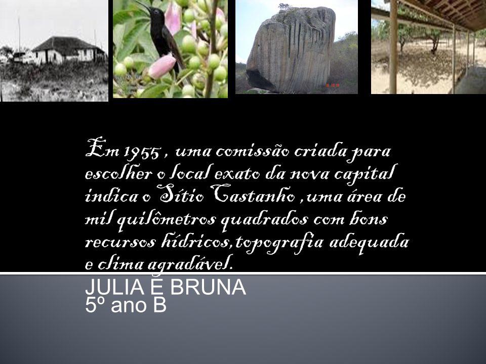Em 1955 , uma comissão criada para escolher o local exato da nova capital indica o Sítio Castanho ,uma área de mil quilômetros quadrados com bons recursos hídricos,topografia adequada e clima agradável.