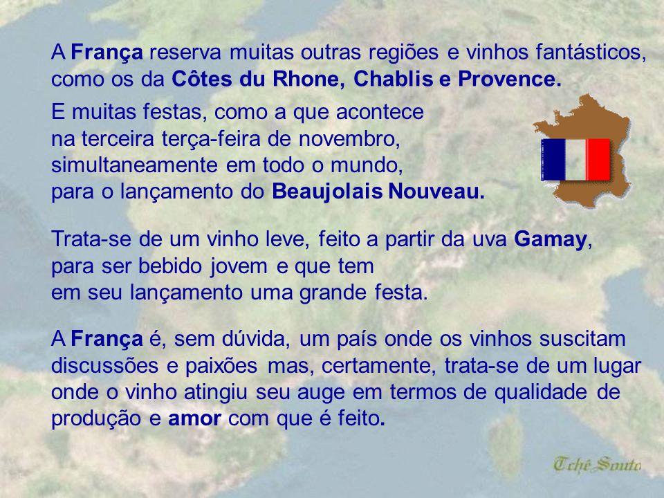 A França reserva muitas outras regiões e vinhos fantásticos,