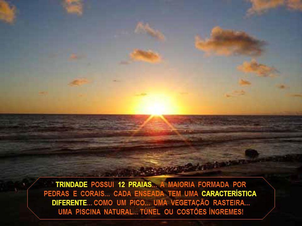 TRINDADE POSSUI 12 PRAIAS... A MAIORIA FORMADA POR