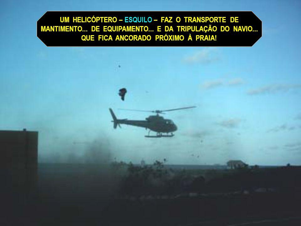 UM HELICÓPTERO – ESQUILO – FAZ O TRANSPORTE DE