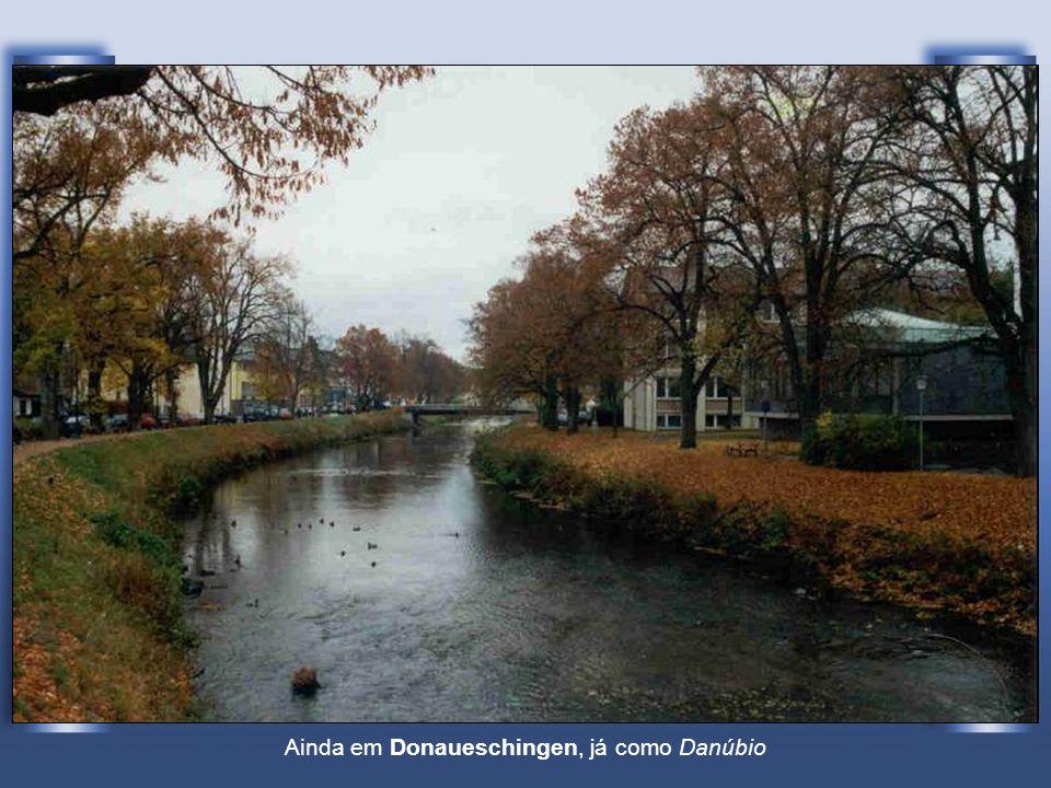 Ainda em Donaueschingen, já como Danúbio