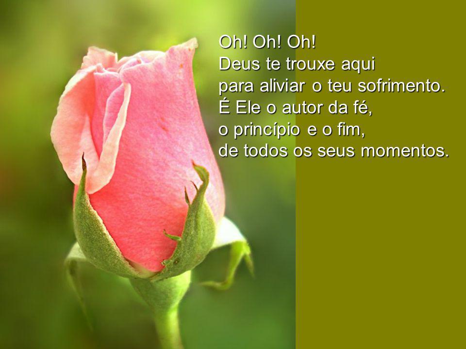 Oh! Oh! Oh! Deus te trouxe aqui. para aliviar o teu sofrimento. É Ele o autor da fé, o princípio e o fim,