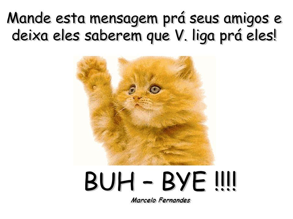 BUH – BYE !!!! Marcelo Fernandes