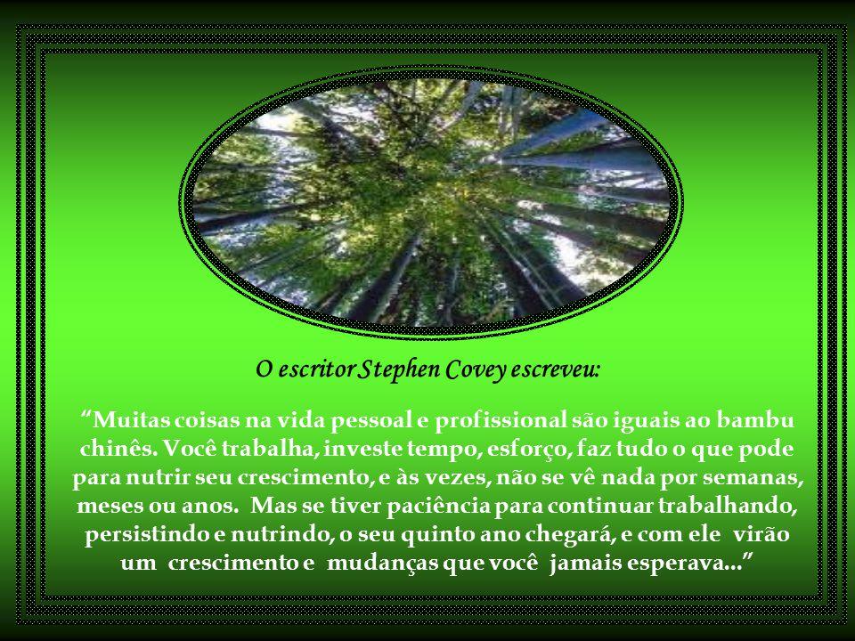 O escritor Stephen Covey escreveu: