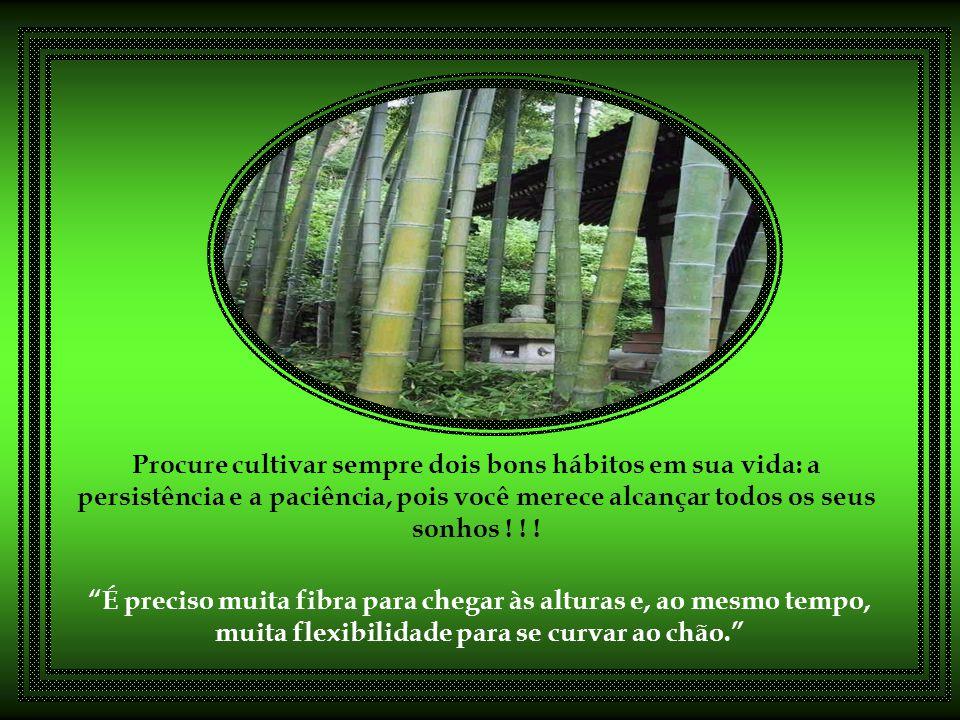 Procure cultivar sempre dois bons hábitos em sua vida: a persistência e a paciência, pois você merece alcançar todos os seus sonhos ! ! !