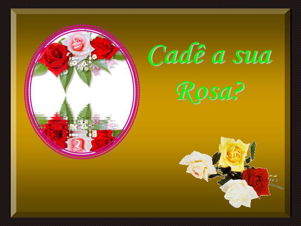 Cadê a sua Rosa