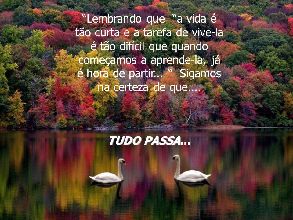 Lembrando que a vida é tão curta e a tarefa de vive-la é tão difícil que quando começamos a aprende-la, já é hora de partir... Sigamos na certeza de que....