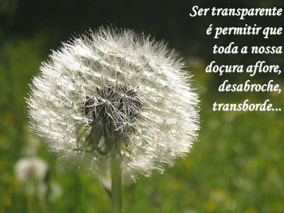 Ser transparente é permitir que toda a nossa doçura aflore, desabroche, transborde...