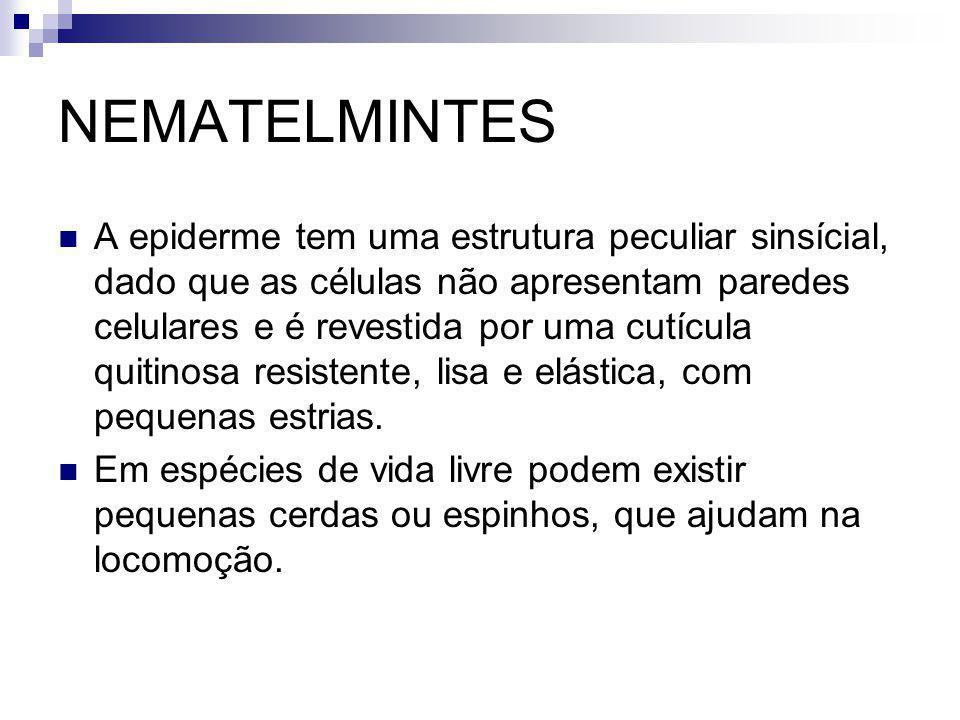 NEMATELMINTES