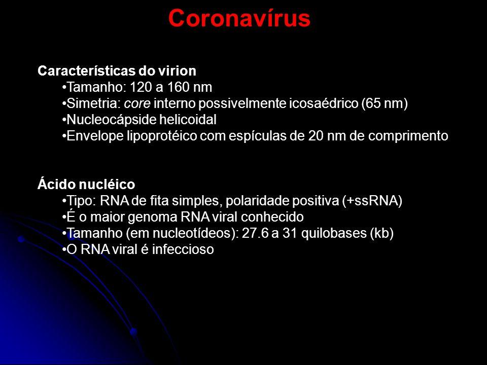 Coronavírus Características do virion Tamanho: 120 a 160 nm