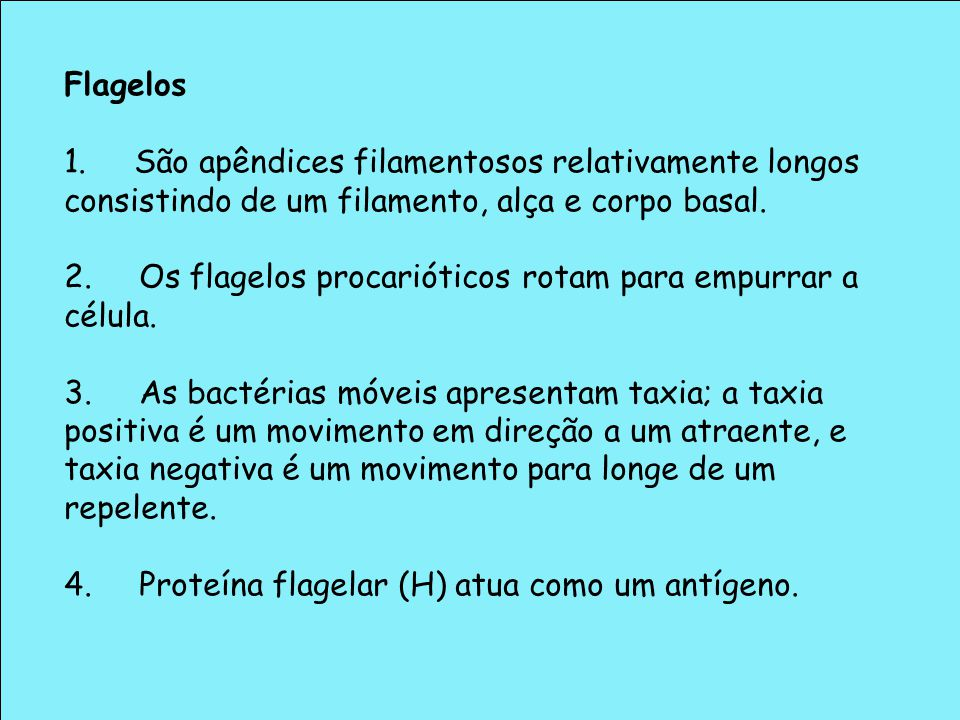 Flagelos 1. São apêndices filamentosos relativamente longos consistindo de um filamento, alça e corpo basal.