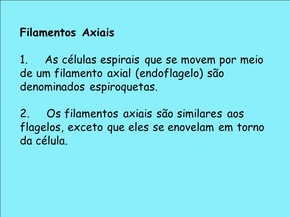 Filamentos Axiais 1. As células espirais que se movem por meio de um filamento axial (endoflagelo) são denominados espiroquetas.
