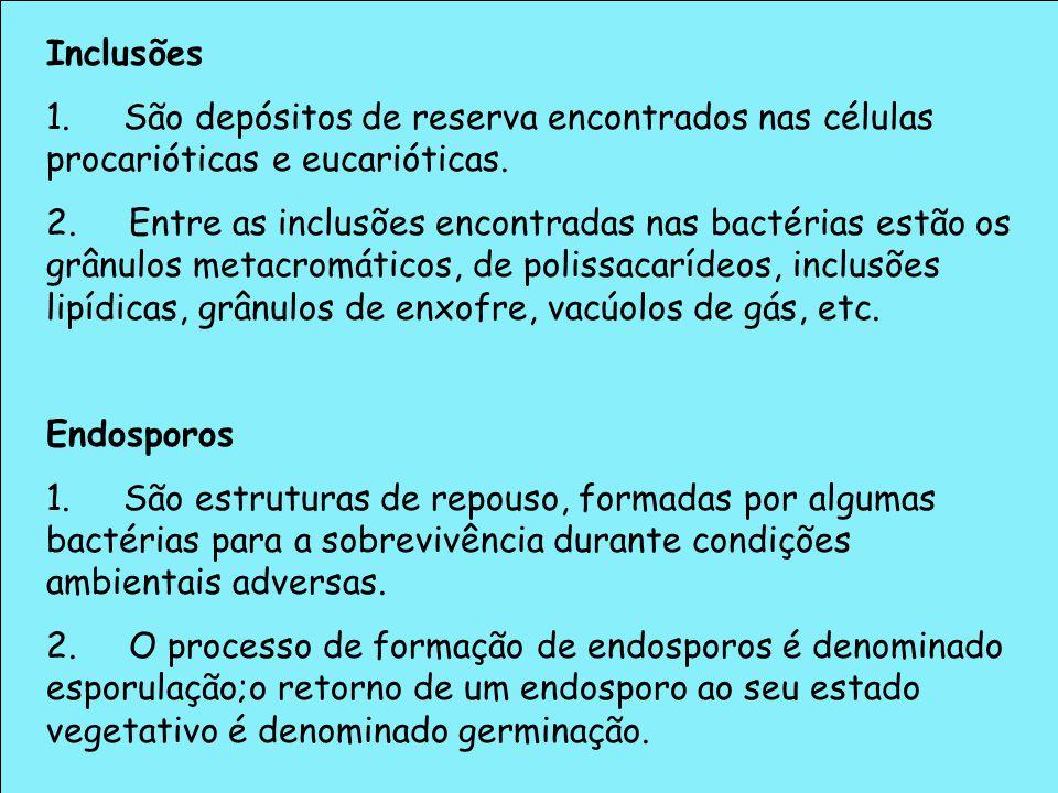 Inclusões 1. São depósitos de reserva encontrados nas células procarióticas e eucarióticas.