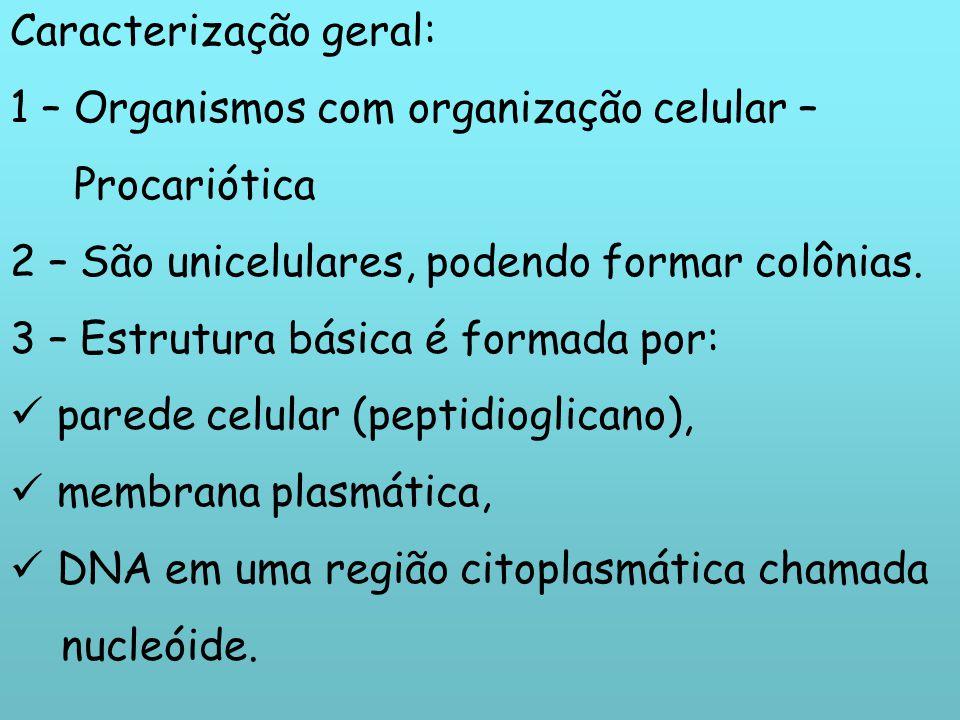 Caracterização geral: