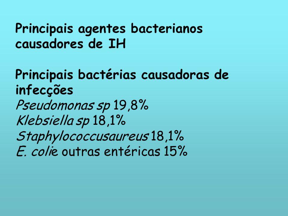 Principais agentes bacterianos causadores de IH