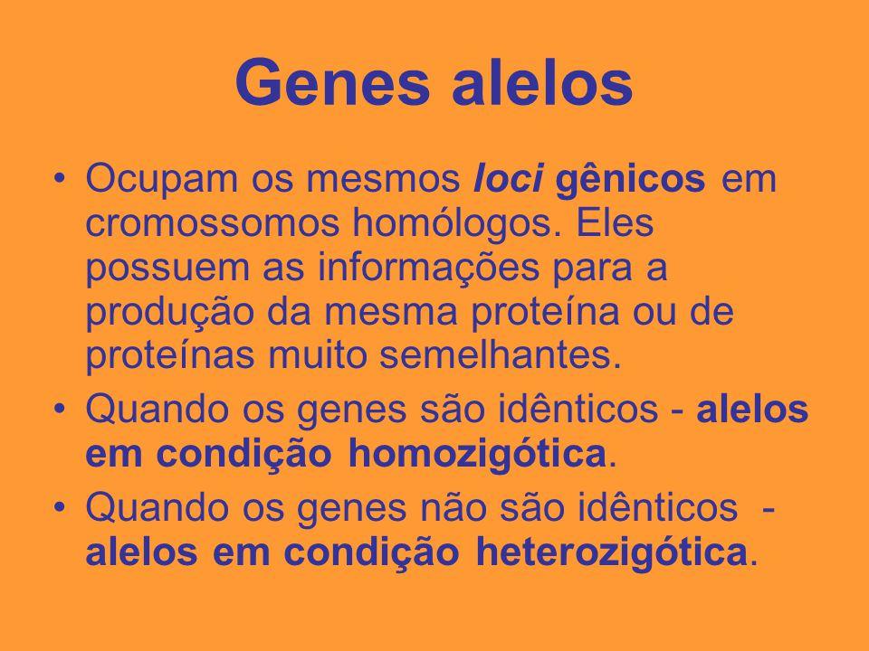 Genes alelos