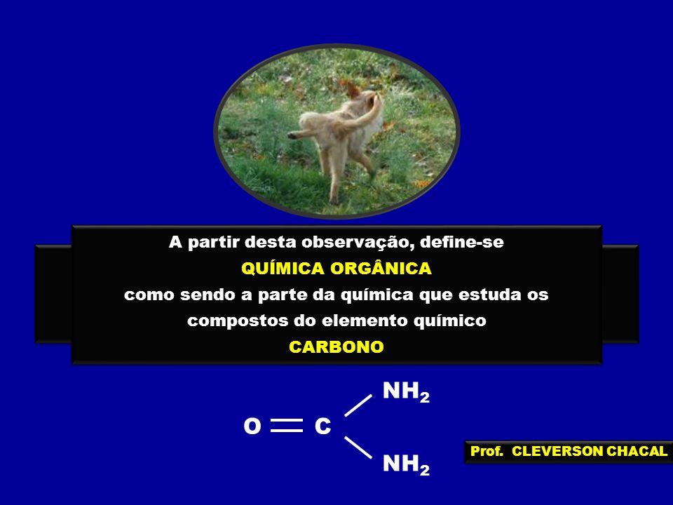 NH2 C O A partir desta observação, define-se QUÍMICA ORGÂNICA