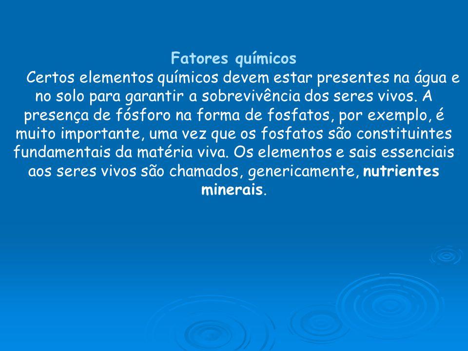 Fatores químicos