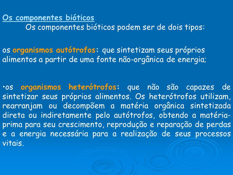 Os componentes bióticos
