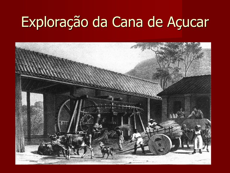 Exploração da Cana de Açucar