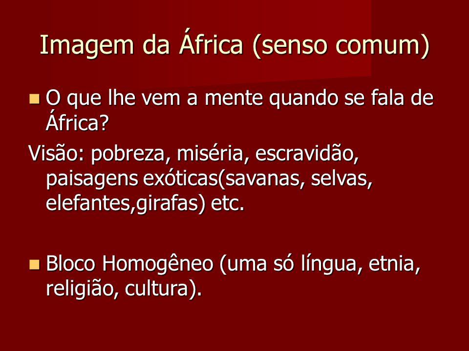 Imagem da África (senso comum)