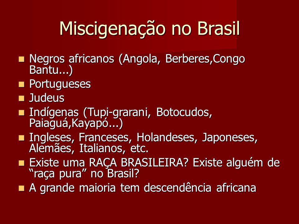 Miscigenação no Brasil