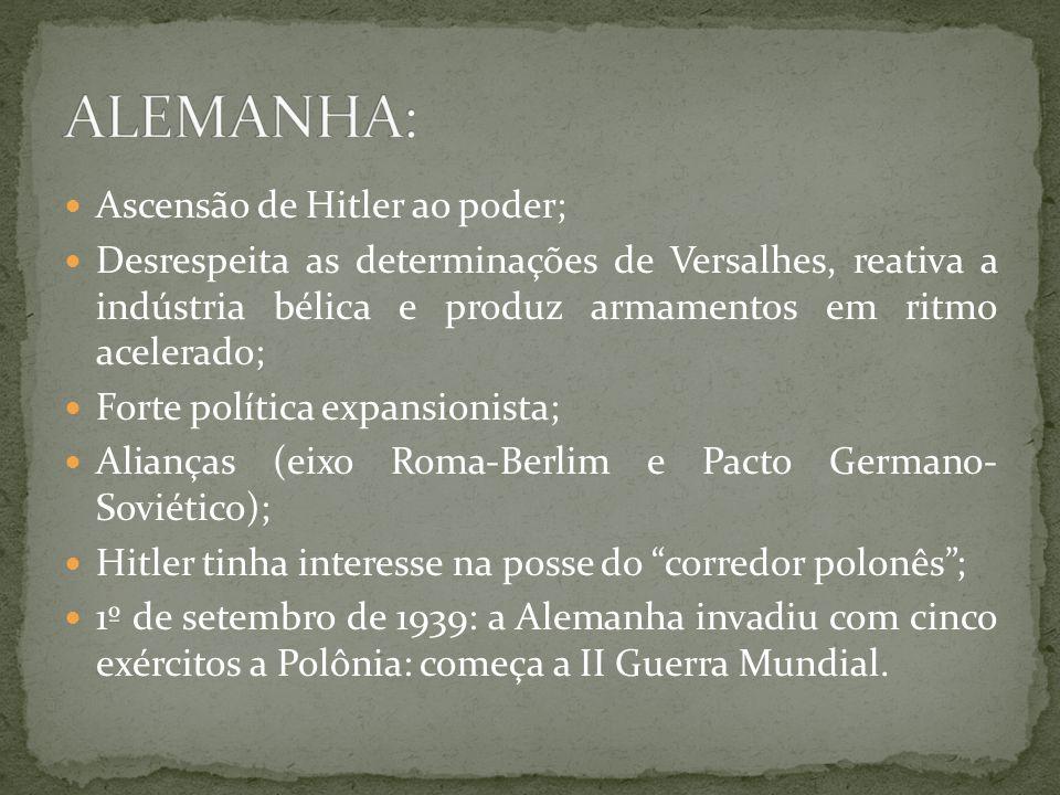 ALEMANHA: Ascensão de Hitler ao poder;