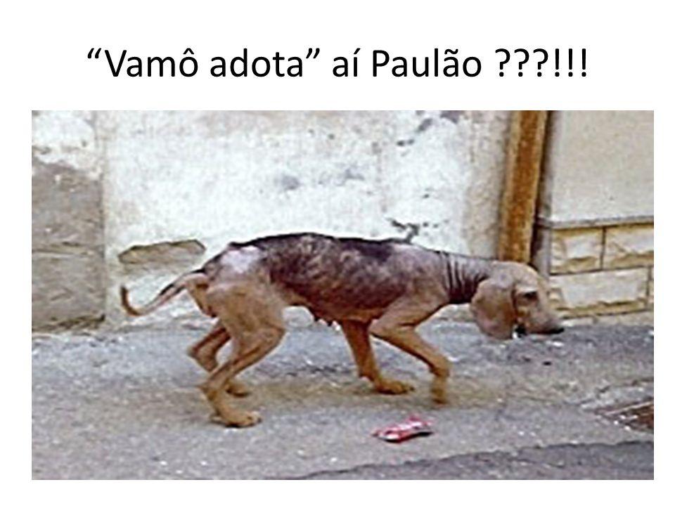 Vamô adota aí Paulão !!!