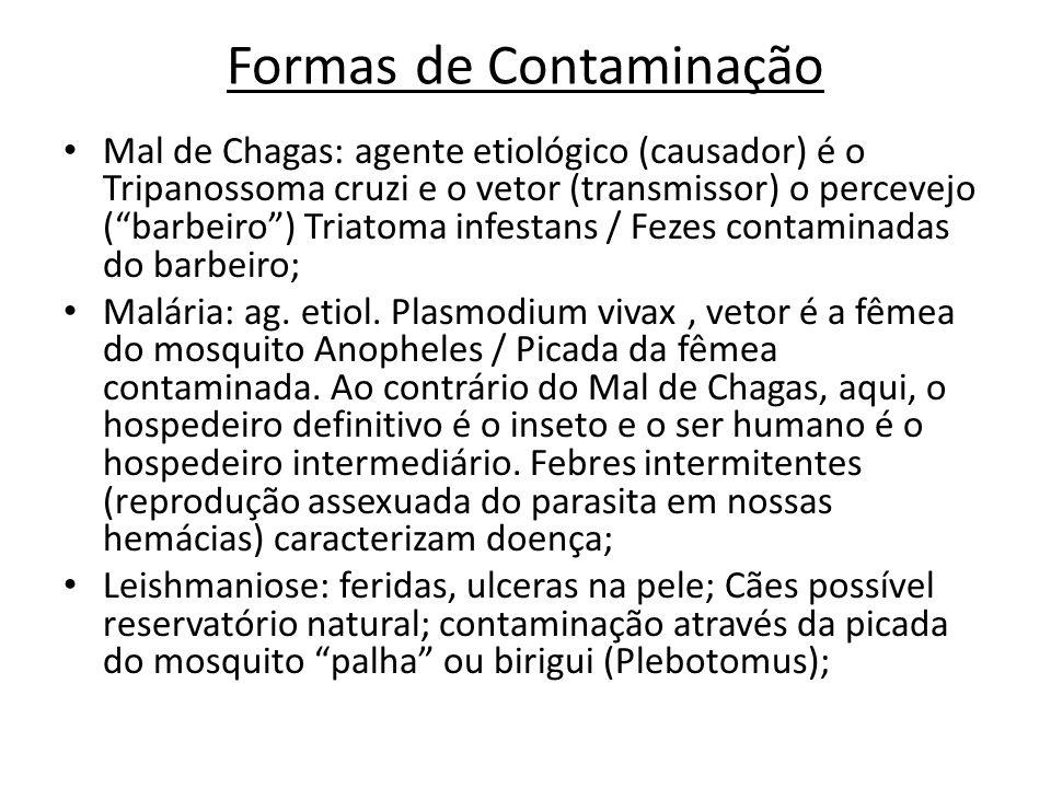 Formas de Contaminação