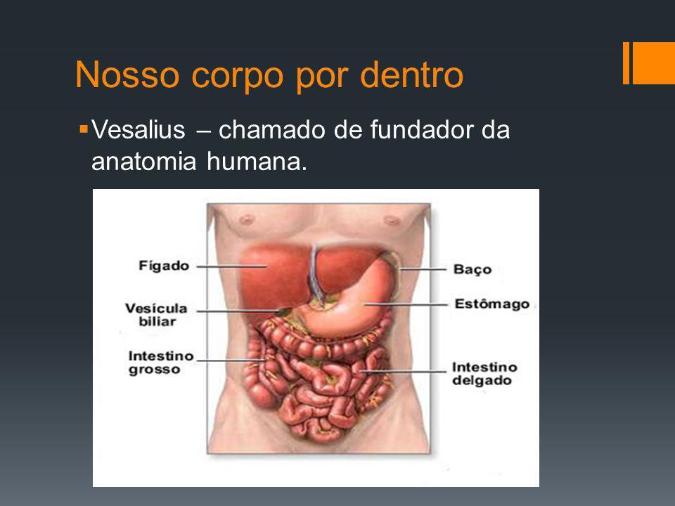 Nosso corpo por dentro Vesalius – chamado de fundador da anatomia humana.