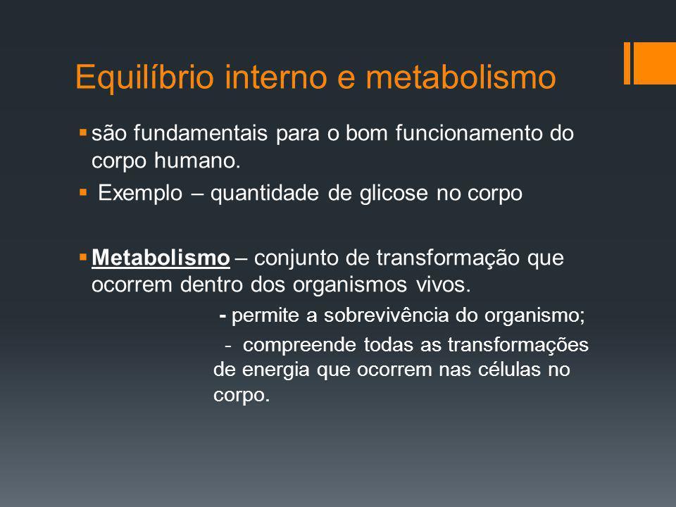 Equilíbrio interno e metabolismo
