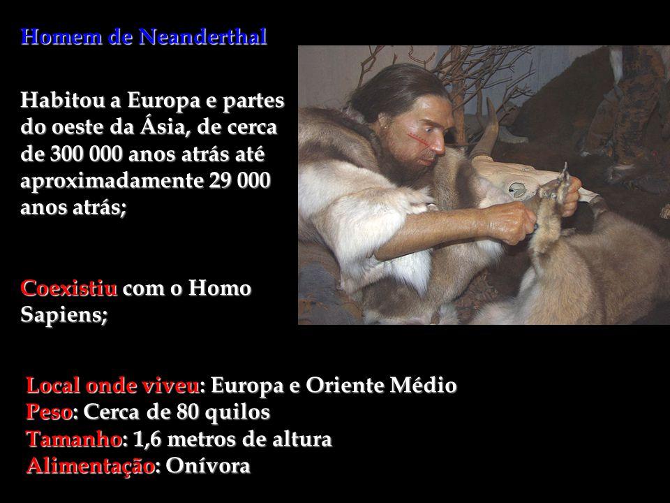Homem de Neanderthal Habitou a Europa e partes do oeste da Ásia, de cerca de 300 000 anos atrás até aproximadamente 29 000 anos atrás;