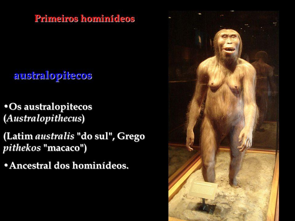 australopitecos Primeiros hominídeos
