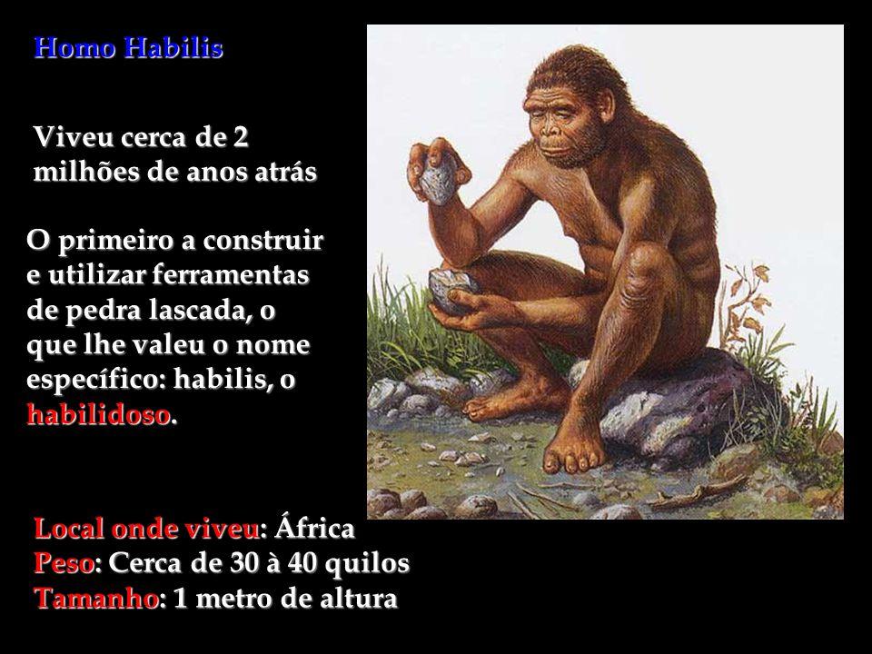 Homo Habilis Viveu cerca de 2 milhões de anos atrás.