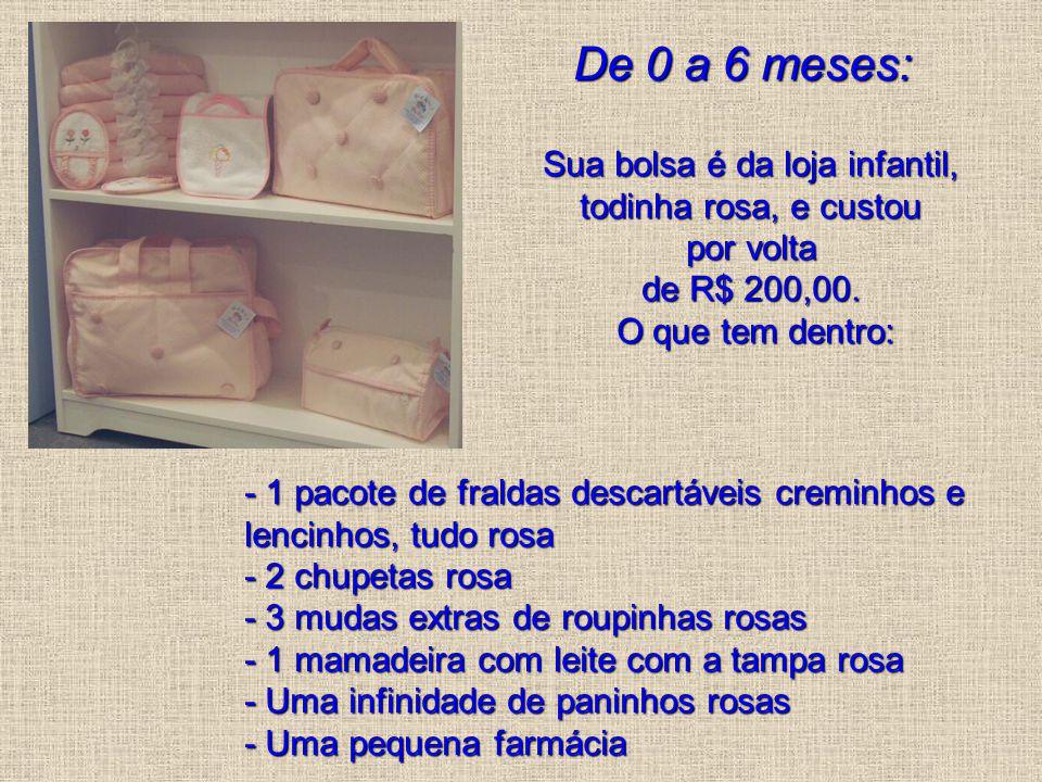De 0 a 6 meses: Sua bolsa é da loja infantil, todinha rosa, e custou por volta de R$ 200,00. O que tem dentro: