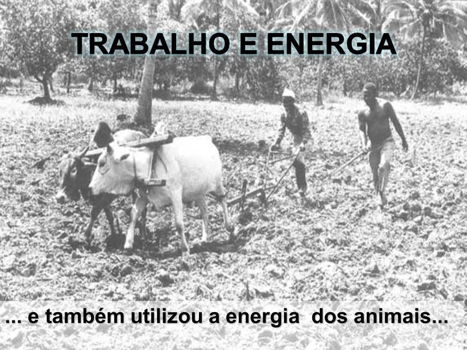 Trabalho e Energia ... e também utilizou a energia dos animais...