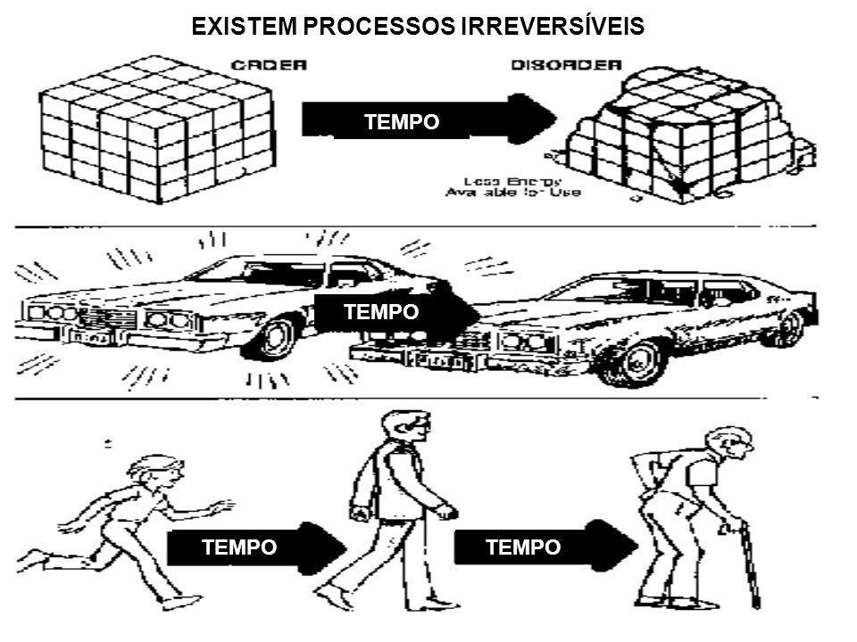 EXISTEM PROCESSOS IRREVERSÍVEIS