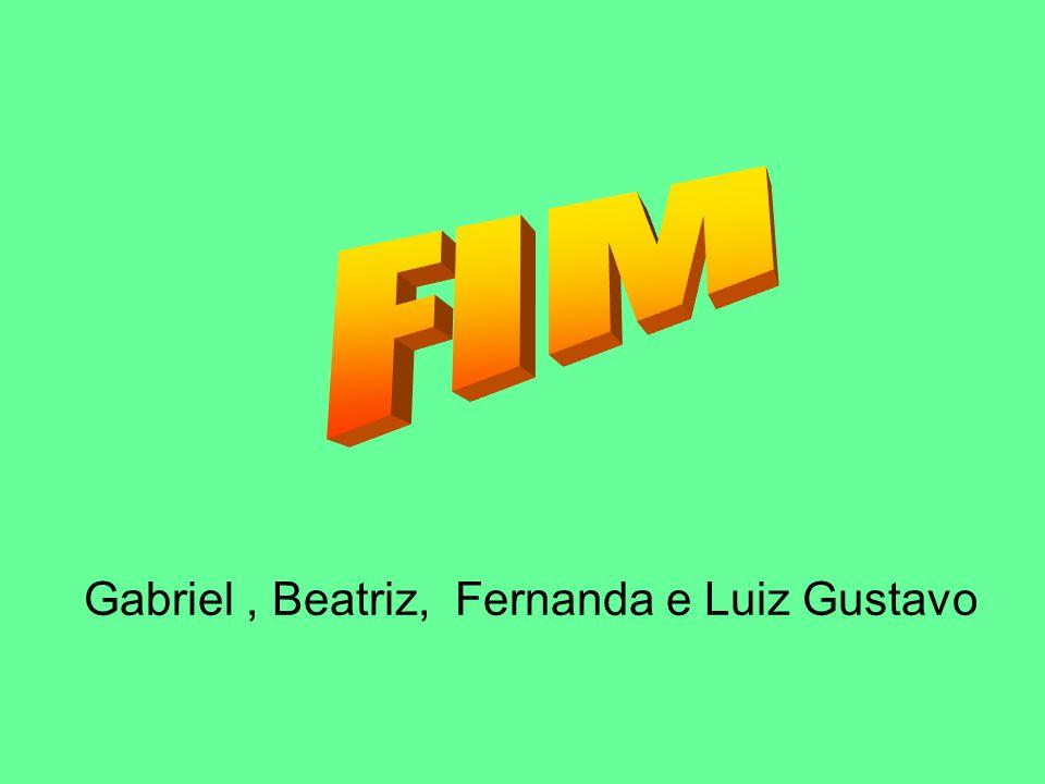 Gabriel , Beatriz, Fernanda e Luiz Gustavo
