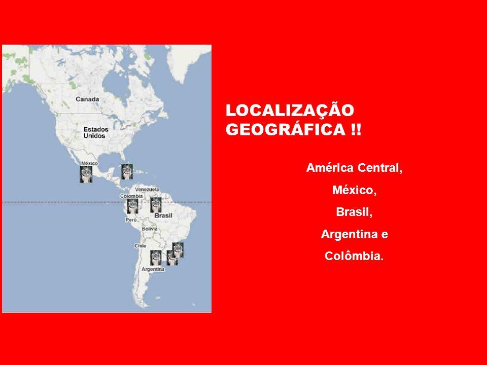 LOCALIZAÇÃO GEOGRÁFICA !!