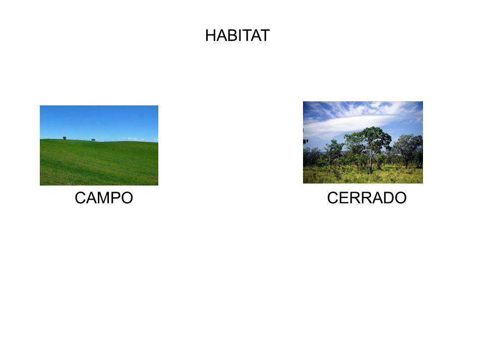 HABITAT CAMPO CERRADO