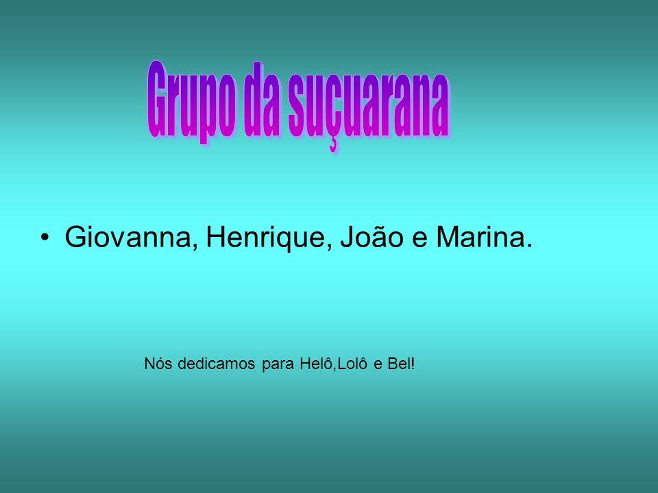 Grupo da suçuarana Giovanna, Henrique, João e Marina.